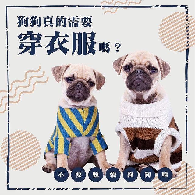 【狗狗真的需要穿衣服